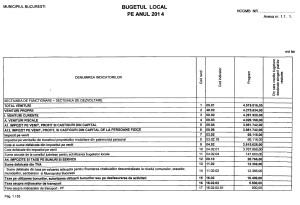 buget 2014 PMB