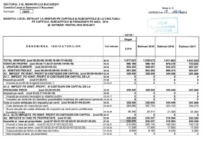 buget total si venituri p1